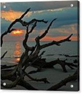 Sunrise At Driftwood Beach 2.2 Acrylic Print by Bruce Gourley