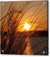 Sunset Over Lake Wylie Sc Acrylic Print by Dustin K Ryan