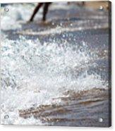 Surf Crashing Acrylic Print by Lisa Knechtel