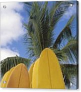 Surfboard Concession Acrylic Print by Bob Abraham - Printscapes