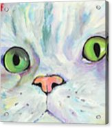 Sweet Puss Acrylic Print by Pat Saunders-White