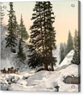 Switzerland: Davos, C1895 Acrylic Print by Granger