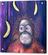 Temptation Acrylic Print by Leah Saulnier The Painting Maniac