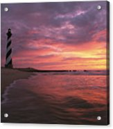 The 198-foot Tall Acrylic Print by Steve Winter