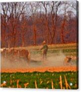 The Amish Way Acrylic Print by Scott Mahon
