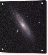 The Andromeda Galaxy Acrylic Print by Phillip Jones