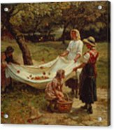 The Apple Gatherers Acrylic Print by Frederick Morgan