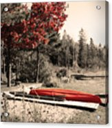 The End Of Summer Acrylic Print by Cathy  Beharriell