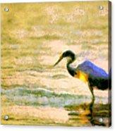 The Herons Acrylic Print by Odon Czintos