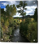 The High Road To Taos Acrylic Print by Timothy Johnson