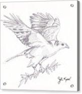 The Peace Offering Acrylic Print by John Keaton