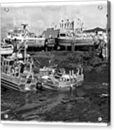 The Real Alaska - Caught At Low Tide Acrylic Print by Pete Hellmann