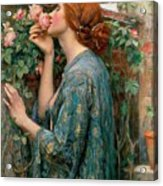 The Soul Of The Rose Acrylic Print by John William Waterhouse