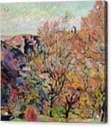 The Valley Of The Sedelle In Crozant Acrylic Print by Jean Baptiste Armand Guillaumin