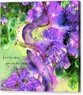 The Vine Acrylic Print by Anne Duke