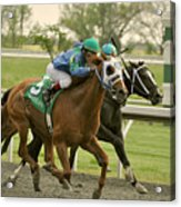 Thoroughbred Racing Acrylic Print by Samantha Windham