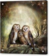Three Owl Moon Acrylic Print by Carol Cavalaris
