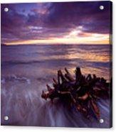 Tide Driven Acrylic Print by Mike  Dawson