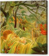 Tiger In A Tropical Storm Acrylic Print by Henri Rousseau