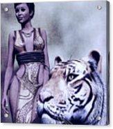 Tigress Acrylic Print by Maynard Ellis
