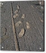 Tire Tracks And Foot Prints Acrylic Print by Heather Kirk