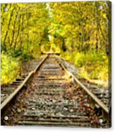 Track To Nowhere Acrylic Print by Greg Fortier