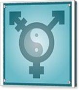 Transgender Balance, Conceptual Artwork Acrylic Print by Stephen Wood