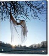 Transparent Fabric Acrylic Print by Bernard Jaubert