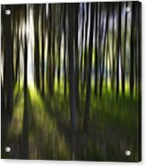 Tree Abstract Acrylic Print by Avalon Fine Art Photography