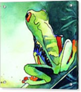 Tree Frog Eats Bugs Acrylic Print by Jo Lynch