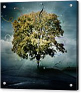 Tree Of Hope Acrylic Print by Mary Hood