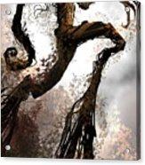 Treeman Acrylic Print by Alex Ruiz