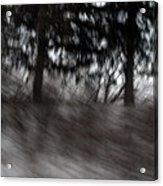 Treescape Acrylic Print by David Hickey