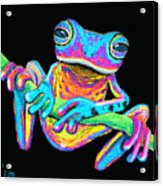 Tropical Rainbow Frog On A Vine Acrylic Print by Nick Gustafson
