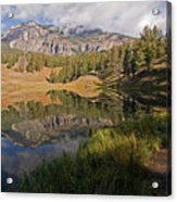 Trout Lake, Yellowstone National Park Acrylic Print by DBushue Photography