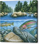 Trout View Acrylic Print by JQ Licensing