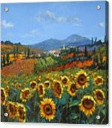 Tuscan Sunflowers Acrylic Print by Chris Mc Morrow