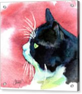 Tuxedo Cat Profile Acrylic Print by Christy  Freeman