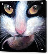 Tuxedo Cat With Mouse Acrylic Print by Svetlana Novikova
