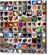 Two Hundred Series Acrylic Print by Boy Sees Hearts