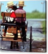 Two Little Amish Boys In A Buggy Acrylic Print by Randy Matthews