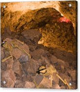 Two Skeletons Crawl Up A Rocky Hill Acrylic Print by Taylor S. Kennedy