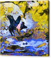 Van Gogh.s Flying Pig 3 Acrylic Print by Wingsdomain Art and Photography