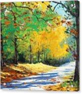 Vibrant Autumn Acrylic Print by Graham Gercken