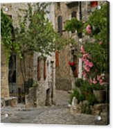 Village Walk Acrylic Print by Joe Bonita