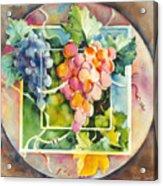 Vineyard Acrylic Print by Joan  Jones