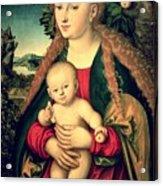 Virgin And Child Under An Apple Tree Acrylic Print by Lucas Cranach the Elder