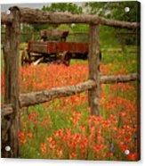 Wagon In Paintbrush - Texas Wildflowers Wagon Fence Landscape Flowers Acrylic Print by Jon Holiday