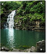 Waimea Falls Acrylic Print by Charmian Vistaunet