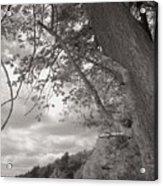Walden Pond Acrylic Print by Heather Weikel